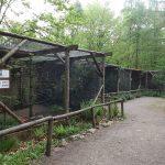 Eulenvoliere (Tierpark Hexentanzplatz)