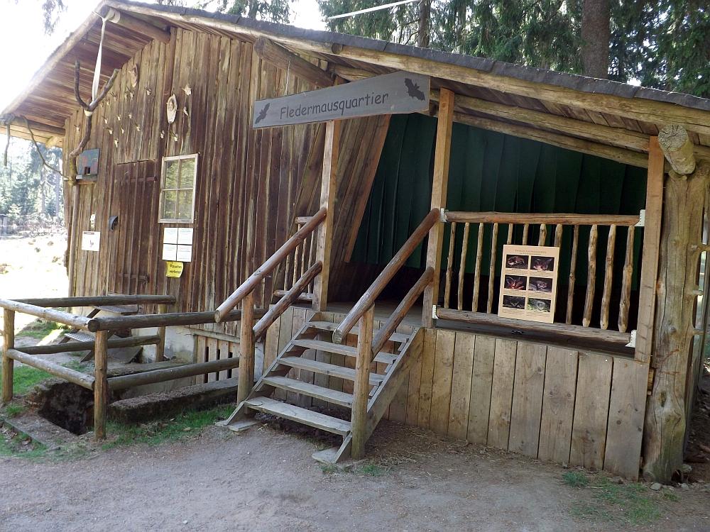 Fledermausquartier (Wildpark Mehlmeisel)