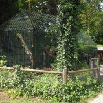 Meerkatzenanlage (Tiergarten Straubing)