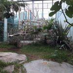 Meerkatzenanlage (Tierpark Hellabrunn)