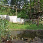 Waschbären- und Fischotteranlage (Tiergarten Straubing)
