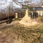 Erdwolfanlage (Zoo Halle)