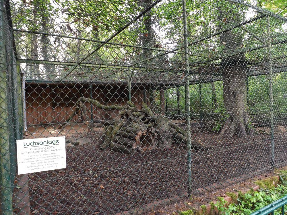 Luchsanlage (Tierpark Köthen)