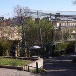 Raubtieranlage (Zoo Halle)
