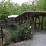 Holzbrücke über die Wolfsschlucht (Nationalparkzentrum Falkenstein)